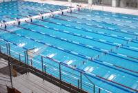 Zawody pływackie Alsecco Cup 2021